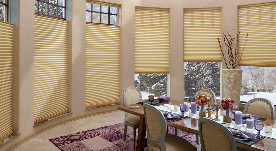 Duette Architella Trielle Honeycomb Shades Dallas