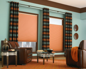 Pair Drapery with Shades