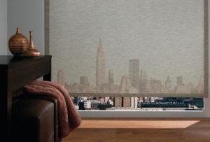Designer Solar Screen Shades in the Living Room