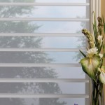 Energy Efficient Silhouette Shades
