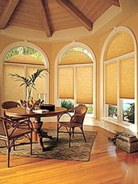 Specialty Shaped Windows - Honeycomb Shades